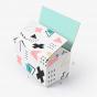 Custom Full Overlap Shipping Box